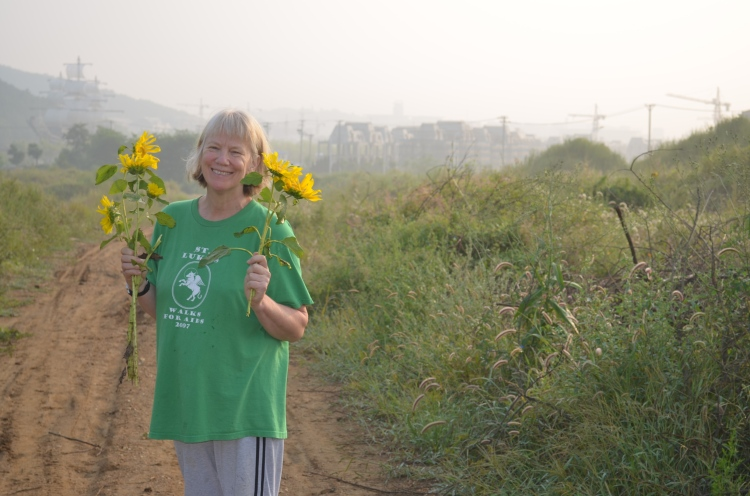the Dutch-Australian wife in her element - holding freshly picked Sunflowers