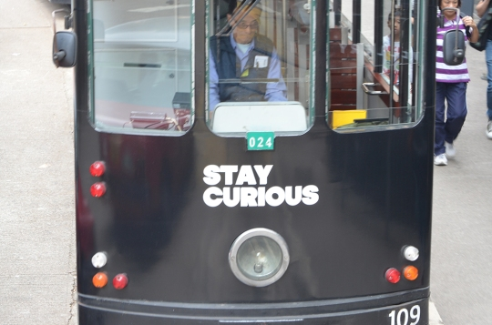 stay curious - trolly