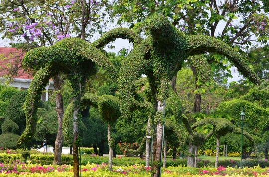 gardens at Centara
