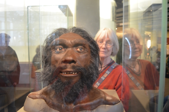 Smithsonian Museum of Natural History Washington DC Narda finds a man
