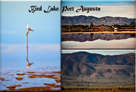 Bird Lake, Port Augusta
