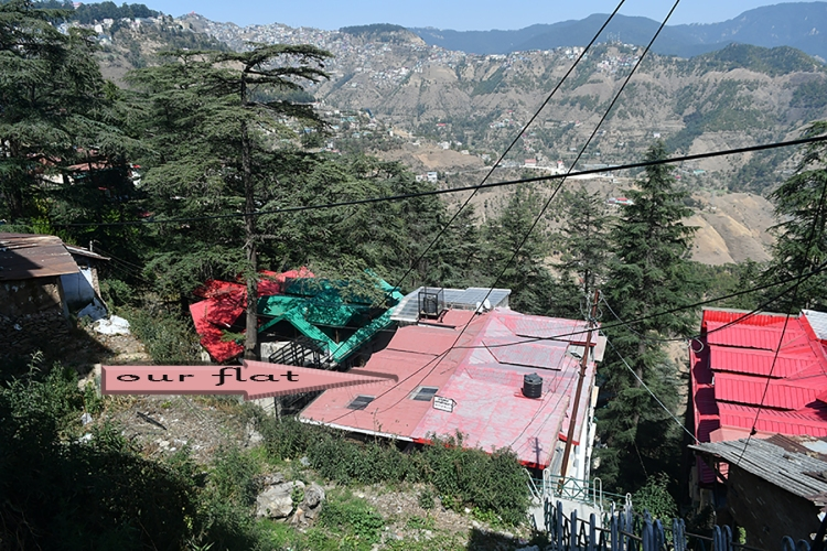 our flat at Kasumpti, Shimla.