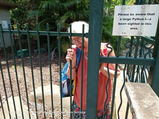 Darwin Botanic Gardens: which is more dangerous? a python or a badass wife